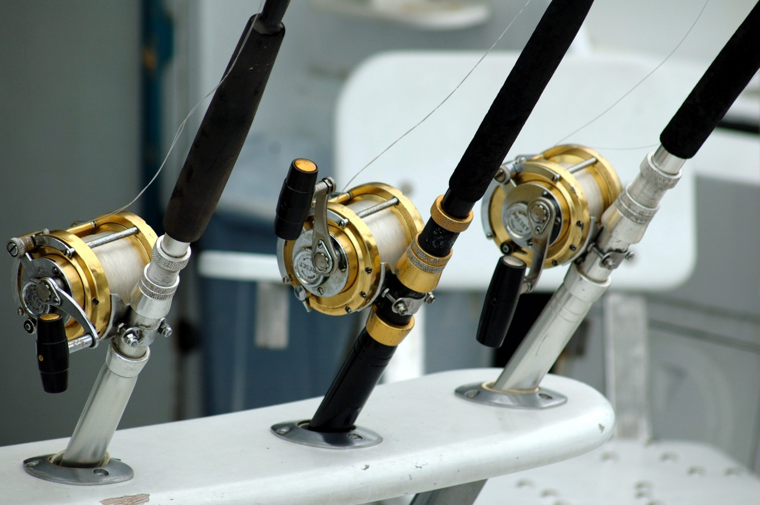 3 fishing rods all lined up